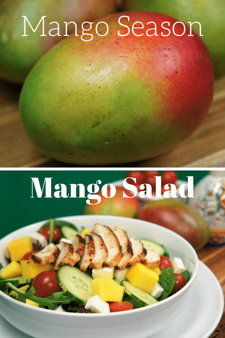 Mango season in Miami is truly a treat, they're everywhere! What to do with all those delicious mangos? Make a grilled chicken mango salad, add fresh mozzarella, cucumbers, tomatoes and top with a balsamic vinaigrette for a wonderful summer salad. #grilledchickenmangosalad #grilledchicken #mangos #summersalad #salads #chicken