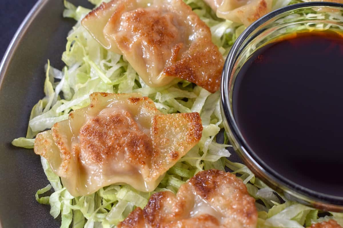 A close up of pork potstickers arranged on a bed of shredded lettuce on a gray plate.