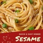 Sesame Noodles PIN