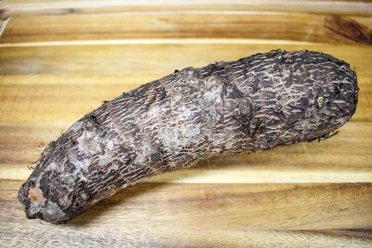 A large malanga on a wood cutting board.